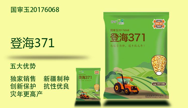 baozhuang.jpg